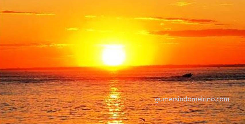 sol-gumer-meirino